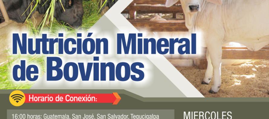 EN VIVO: Nutrición Mineral de Bovinos