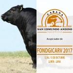San Edmundo Andino Auspicia XXXIII Concurso Nacional de Ganado Vacuno Engordado