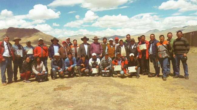 Brown Swiss_asociacion-peru-1