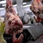 Ractopamina en Carne: Rusos Cierran el Mercado a las Canales Bovinas y Porcinas de Origen Brasilero