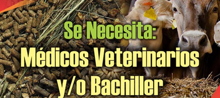 Empresa  de Alimento Balanceado Solicita:  Médicos Veterinarios  y/o Bachilleres