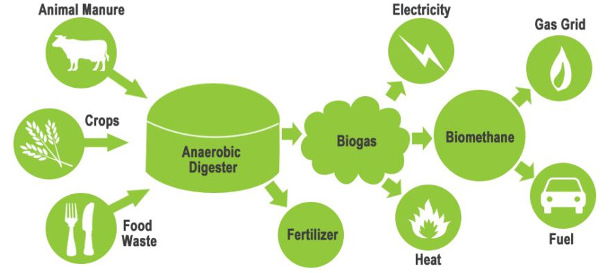 España: Trata Residuos Cárnicos y  Deyecciones para Obtener Biogás