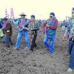 Puno Cultivará mil Hectáreas de Alfalfa para Optimizar la Ganadería