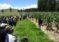 Curso y Demostración de Método: Manejo Tecnificado del Cultivo de Maíz en Pasco