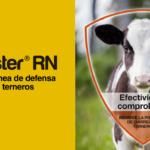 Agrovet Market Presenta Booster® RN Terneros