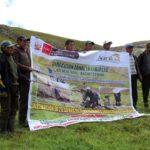 Siembran Más de 100 Hectáreas de Pastos y Pinos en Zonas Altas de La Libertad