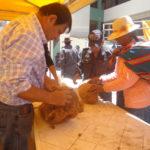 Puno: La Dirección Regional Agraria Comercializa Fibra de Vicuña