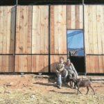 Queso Ecológico de Cabras Empieza a Triunfar en España