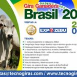 Gira Ganadera a Brasil - Agrishow y Expozebú 2018
