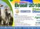 GIRA GANADERA A BRASIL – AGRISHOW Y EXPOZEBU 2018
