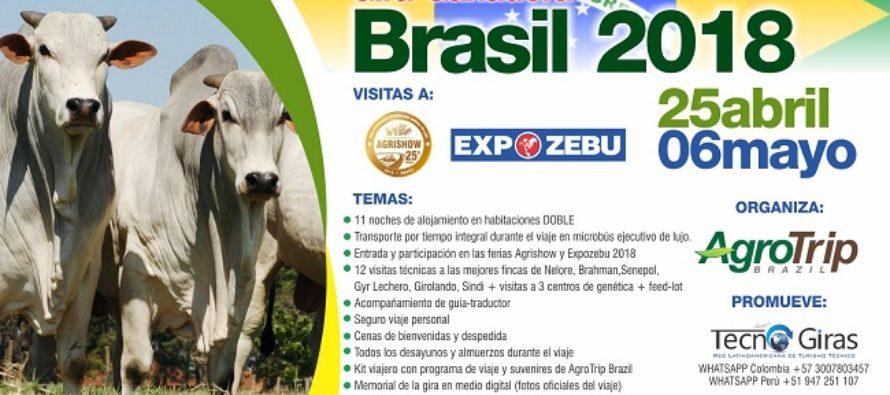 Gira Ganadera a Brasil – Agrishow y Expozebú 2018