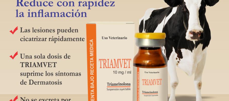 TRIAMVET: Reduce con Rapidez la Inflamación
