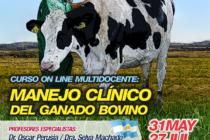 Curso On Line Multidocente: Manejo Clínico del Ganado Bovino 🗓