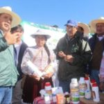 Perú: Plan de Atención ante Heladas en Arequipa Protegerá a Más de 100 mil Cabezas de Ganado