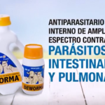Deworma:  Antiparasitario Interno de Amplio Espectro Contra Parásitos Intestinales y Pulmonares