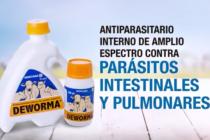 Deworma:  Antiparasitario Interno de Amplio Espectro Contra Parásitos Intestinales y Pulmonares