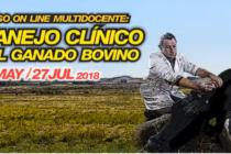 """Videoconferencia: """"Cuando los Terneros se Enferman: Casuística Clínica"""""""