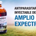 Zeus Nitro: Antiparasitario Inyectable de Amplio Espectro, que Elimina la Fasciola Hepática