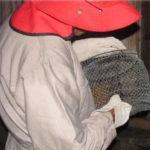 Realizan Trabajo de Control de Rabia Silvestre en Colombia