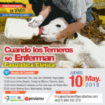 EN VIVO: Cuando los Terneros se Enferman - Casuística Clínica
