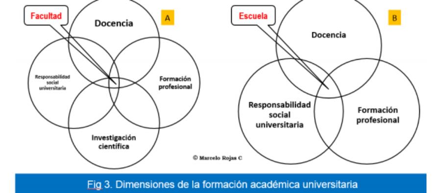 Veterinaria: Estructuras de la Formación Académica
