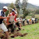 MINAGRI Condecoró a Productores de Moquegua Durante Celebraciones por el Día del Campesino