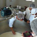 MINAGRI Capacita a Queseros de Piura para Elevar la Calidad de su Producción