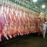 Ganaderos Bolivianos Apuntan a Exportar Carne a China