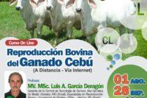 Curso On Line: Reproducción Bovina del Ganado Cebú 🗓