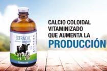 Extracal®: Calcio coloidal vitaminizado que aumenta la producción y favorece el crecimiento de los huesos en animales jóvenes