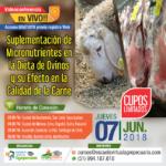 EN VIVO: Suplementación de Micronutrientes en la Dieta de Ovinos y su Efecto en la Calidad de Carne