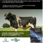 Girolando y la Embrapa Ganado de Leche Publican los Sumarios de Toros y Vacas 2018