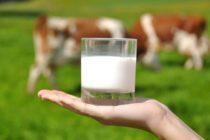 México Abre Mercado para Productos Lácteos Ecuatorianos