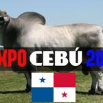 Expo Cebú Panamá 2018