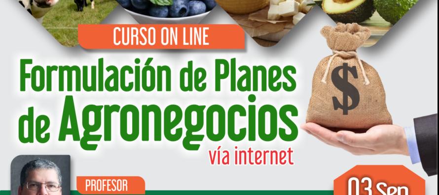 Curso On Line: Formulación de Planes de Agronegocios 2018