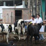 Universidad Nacional Agraria La Molina Ofrece Becas y Facilidades para Escolares e Ingresantes