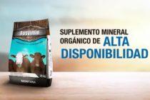 Fosvimin® GT: Suplemento mineral orgánico de alta disponibilidad