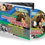 Curso Multidocente en DVD: Producción de Caprinos