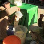 Junín entre los Primeros Productores de Leche en el Perú