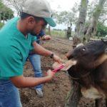 Panamá Sigue con la Jornada del Programa Nacional de Trazabilidad
