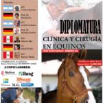 Diplomatura de Clínica y Cirugía en Equinos