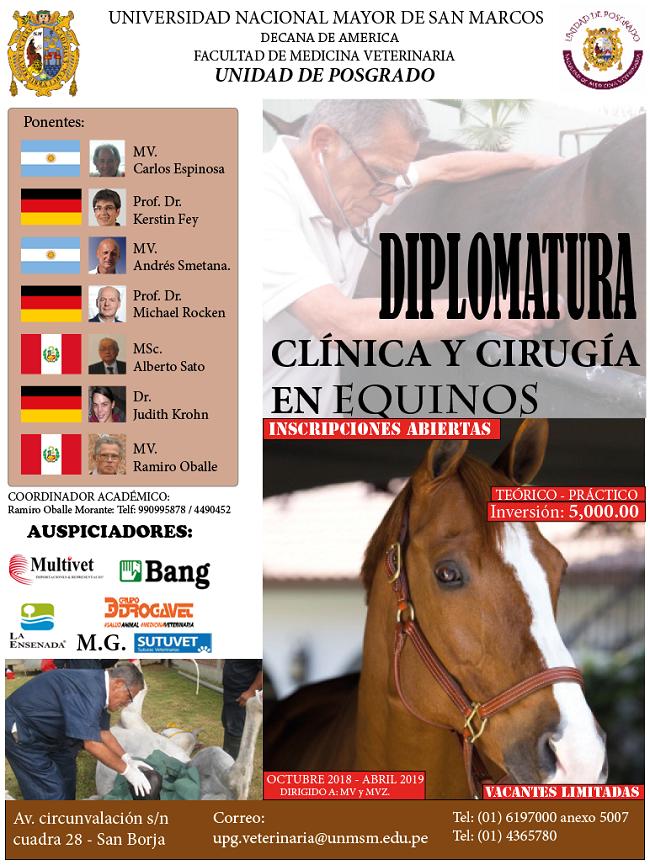 Diplomatura de Clínica y Cirugía en Equinos – Perulactea