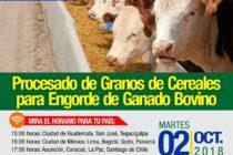 EN VIVO: Procesado de Granos de Cereales para Engorde de Ganado Bovino 🗓