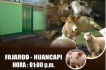 Inauguración del Centro de Mejoramiento Genético en Fajardo – Huancapi, Ayacucho 🗓