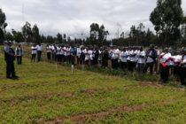 INIA Informa a Productores Ayacuchanos sobre Aplicación de Técnicas para Mejorar Calidad de Pastos