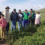 Minagri Fortalece Capacidades de Pequeños Ganaderos en Manejo de Pastos