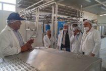Implementan planta de procesamiento de derivados lácteos en Arequipa – Perú