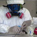 Leptospirosis: Investigadores en Argentina encuentran Nuevas Especies de Roedores Hospederos