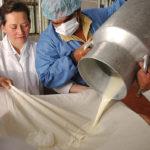 Péptidos de leche Combaten la Resistencia a Antibióticos