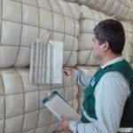Arequipa Lidera Exportaciones de Tops de Fibra de Alpaca